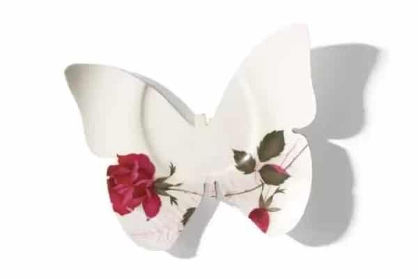broken-plate-butterflie